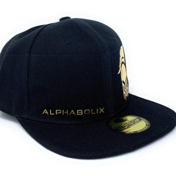 Minimalistic Alphabolix  Snap Back Hat