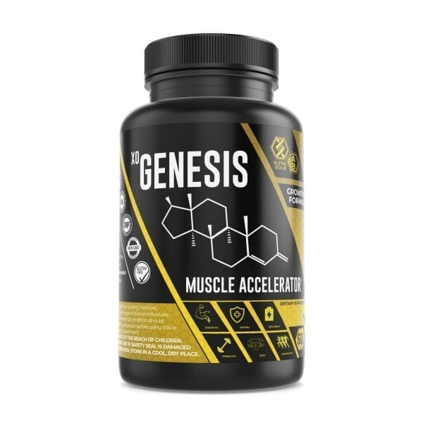 best muscle accelerator