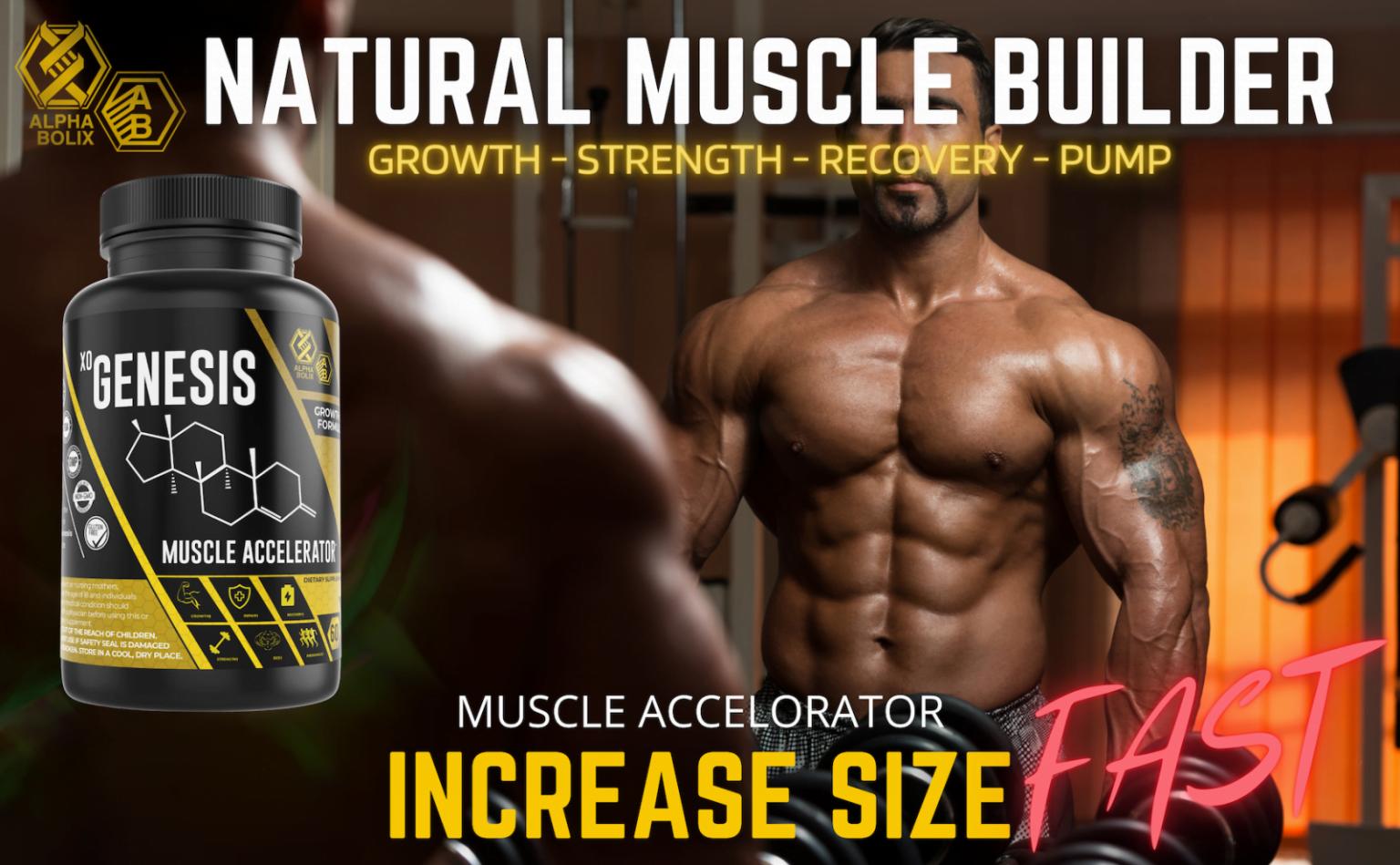 muscle accelerator