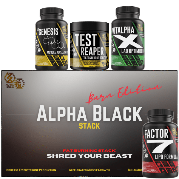 best weight loss stack
