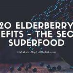 20 Elderberry Benefits – The Secret Superfood