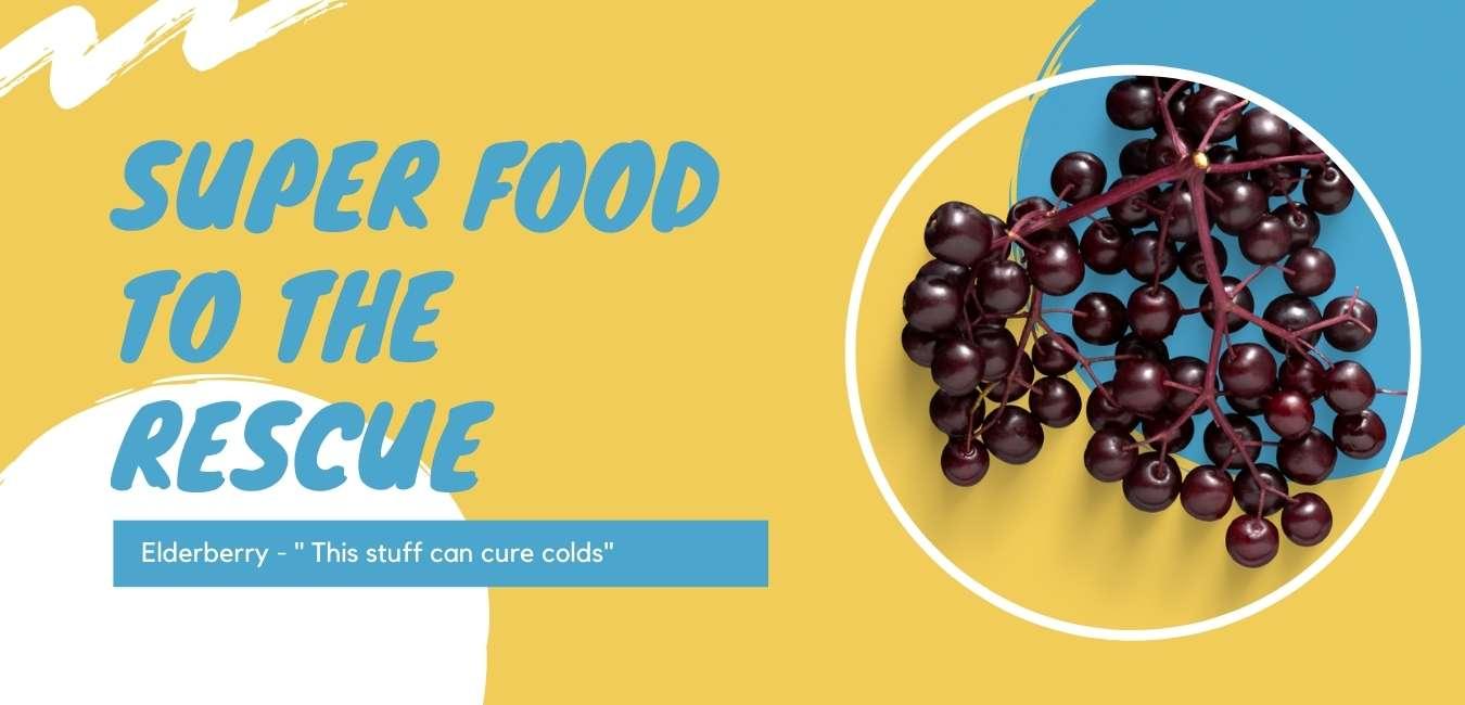 20 elderberry benefits